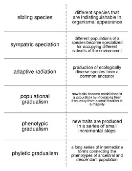 Organic Evolution Vocabulary Flash Cards for Zoology