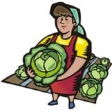 Organic Food and Farming Methods - Text and Exercise Sheets