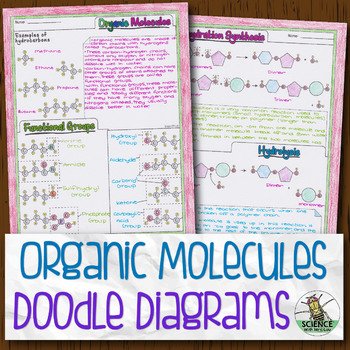 Organic Molecules Biology Doodle Diagram