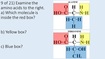 Organic Molecules/Chemistry Challenge Game