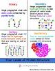 Organic Biological Macromolecules Interactive Flip Book and Quiz