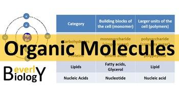Organic Molecules / Organic Chemistry PowerPoint (free handout)