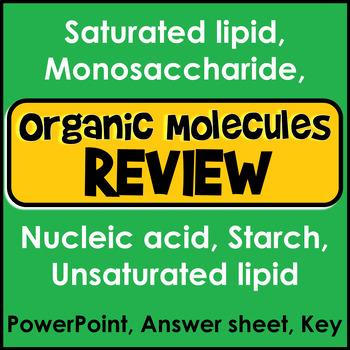 Organic Macromolecule Review
