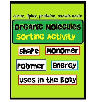 Organic Macromolecule Sorting Activity