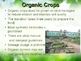 "Organic, Natural and Irradiation ""What does it mean""?"