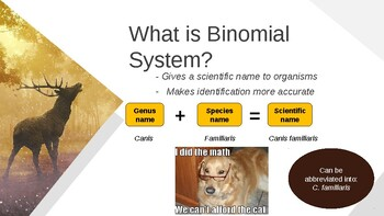 Organism Classifications and Kingdoms (PPT)