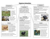 Organism Interactions Poster