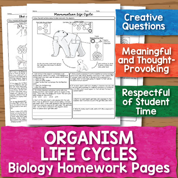 Organism Life Cycles Biology Homework Worksheet