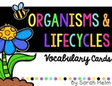Organism + Life Cycles Vocabulary Cards
