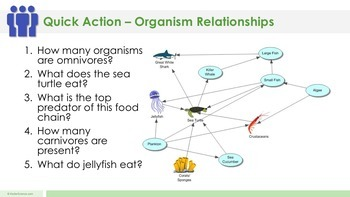 Organism Relationships - Supplemental Lesson - No Lab