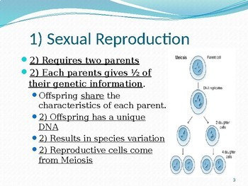 Organism Reproduction Notes: Sexual
