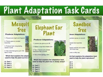 Organism Adaptation Task Cards (combined set)
