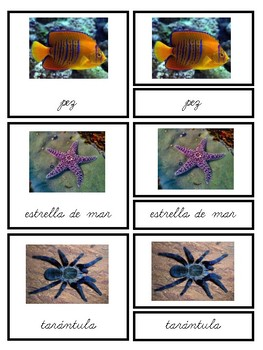Organismos Unicelulares y Pluricelulares-Montessori