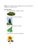 Organisms Classification