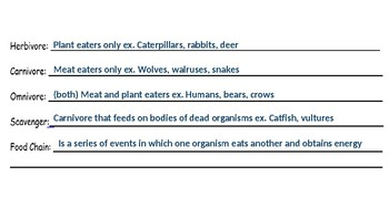 Organisms, Food Chain, Interdependence, and Survival PPT