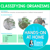 Organisms {Hands-on at Home} | Distance Learning