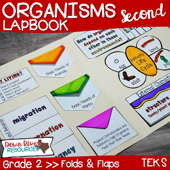 Organisms Lapbook (Plants and Animals)- Second Grade {TEKS}