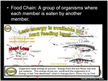 Organisms and Environments Texas TEKS (11)