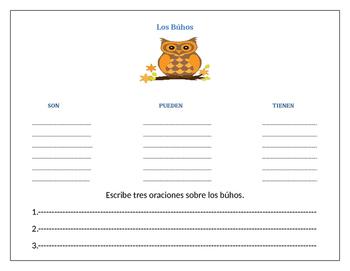 Organizador grafico los buhos/Owls graphic organizer