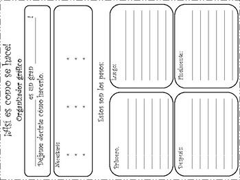 Organizador grafico para Texto de Procedimiento
