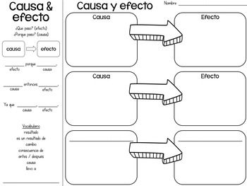 Organizadores gráficos (Graphic Organizers in Spanish)