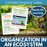 Organization in an Ecosystem Inquiry Labs