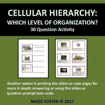 Cellular Hierarchy : Organization of Life Task Cards or Quest Power Point
