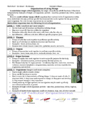 Organization of Living Things Reading, Diagrams, Quesitons