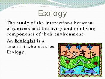 Organization of the Environment Ecology PowerPoint Presentation Lesson