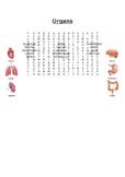Organs Word Search