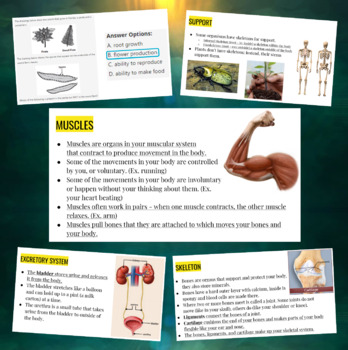 Organs and Body Systems (FCAT/SSA) Presentation