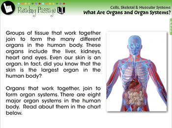 Organs and Organ Systems - MAC Gr. 3-8