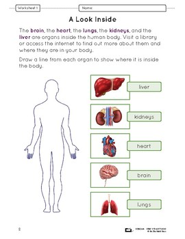 Organs in the Body Lesson Plan Grade 5