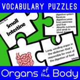 Organs of the Body Vocabulary Puzzles