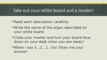 Organs of the Human Body Test Review and Quiz