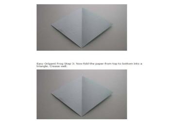 Origami Fun