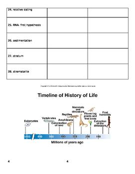 Origin and History of Life Vocabulary