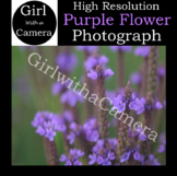 Original Purple Flower Stock Photograph - 100% original ta