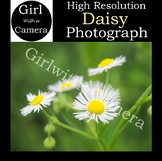 Original Daisy Stock Photograph - 100% original taken by me