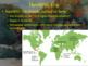 Origins of Civilization (Paleolithic & Neolithic Eras) PowerPoint Presentation