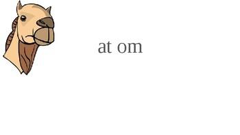 Orton Gillingham--Camel or Tiger Words