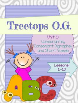 Orton Gillingham Complete Curriculum Unit 1  Lessons 1-10