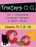 Orton Gillingham Lesson C and -ck