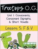 Orton Gillingham Lesson F and V