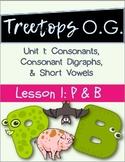Orton Gillingham Lesson P and B