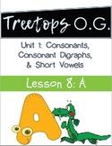 Orton Gillingham Lesson Short a