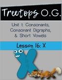 Orton Gillingham Lesson X
