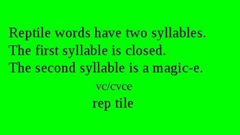 Orton Gillingham Reptile Words