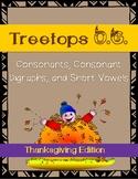 Orton Gillingham Thanksgiving: Consonants and Short Vowels