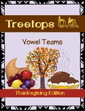 Orton Gillingham Thanksgiving: Vowel Teams